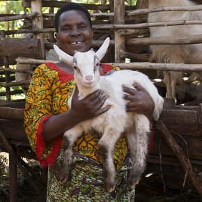 Tansania Stiftung Nusch