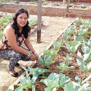 Bolivien Gemüse_web